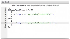 Bild via PHP Custom Post Type ausgeben